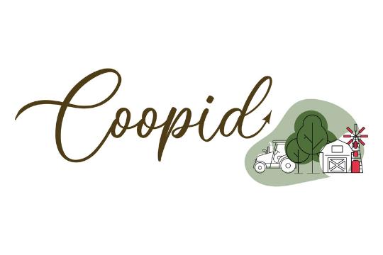Il progetto H2020 COOPID apre la sua attività con un evento digitale (visita virtuale) alla cooperativa di secondo grado Oleícola El Tejar.